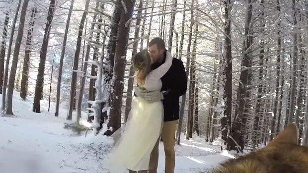 (video) Un cuplu și-a lăsat câinele să le filmeze nunta, iar rezultatul este unul amuzant și viral