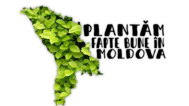 Doritorii să ajute la înverzirea Moldovei sunt invitați să planteze un copac la Bubuieci