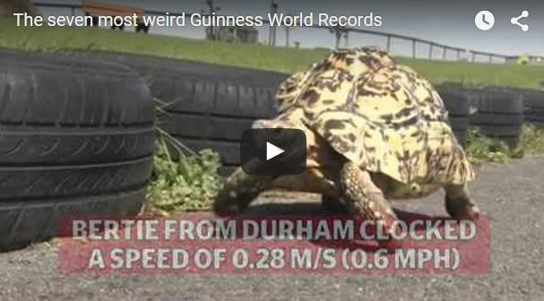 (video) Top 7 cele mai stranii recorduri mondiale înregistrate anul acesta