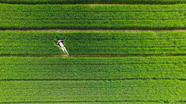 (foto) Cele mai spectaculoase fotografii surprinse din drone în 2015
