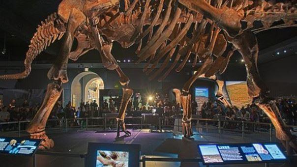 (foto, video) A fost descoperit titanozaurul, cel mai mare dinozaur care a existat vreodată