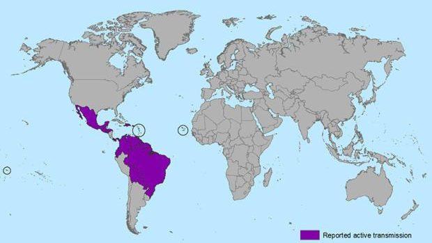Tot ce trebuie să știi despre virusul Zika: Lista țărilor care prezintă riscuri și sfaturi practice