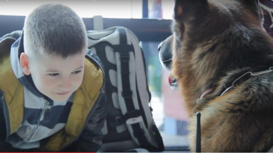 """(video) La Aeroportul din Chișinău a apărut un câine """"vorbăreț"""". Iată ce discută cu pasagerii"""