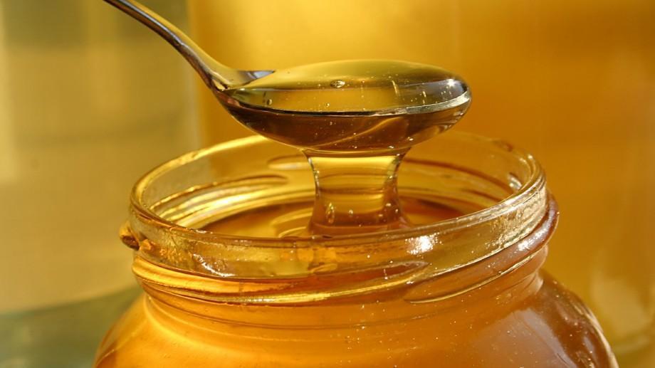 (video) Mierea, o afacere nu prea dulce în Moldova. Cum se descurcă fermierii