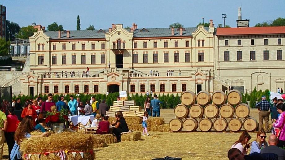 Veste pozitivă pentru iubitorii de vin bun! A fost lansată noua linie de vinuri Castel Mimi