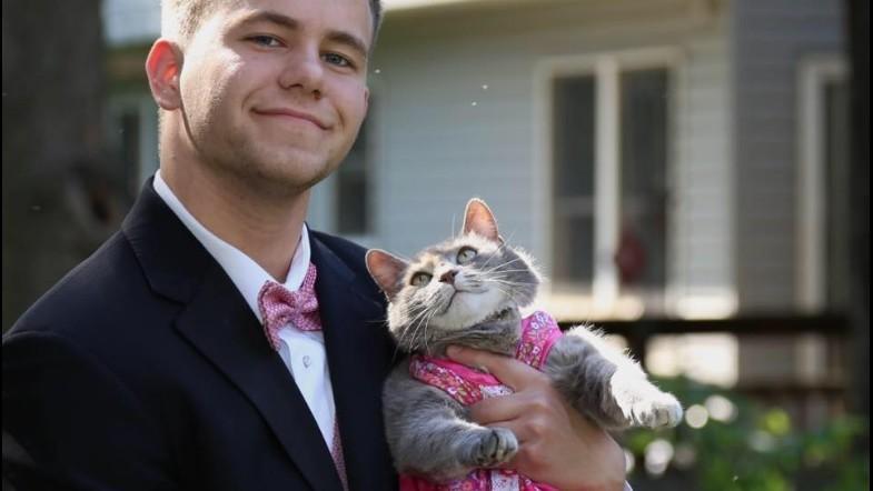 (foto) Idei pentru balul de absolvire: Îți poți lua pisica ca parteneră de dans