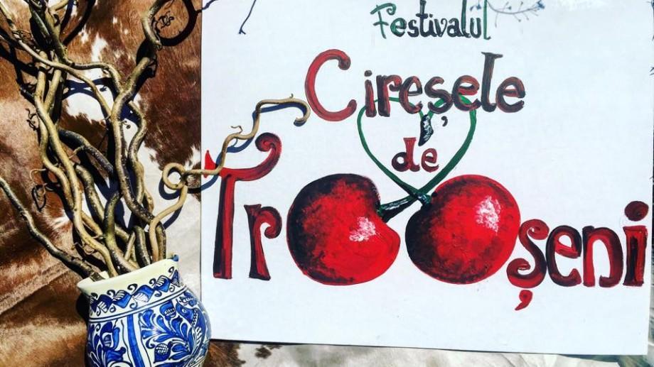 (video) La Trușeni va avea loc cea mai mare sărbătoare a cireșelor din acest an