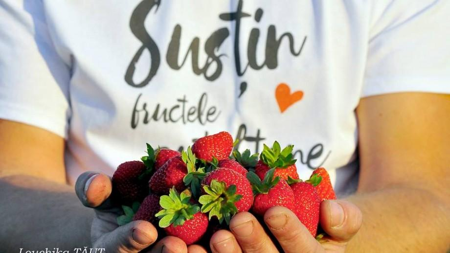 Drumul Fructelor – o inițiativă de promovare a consumului de fructe autohtone