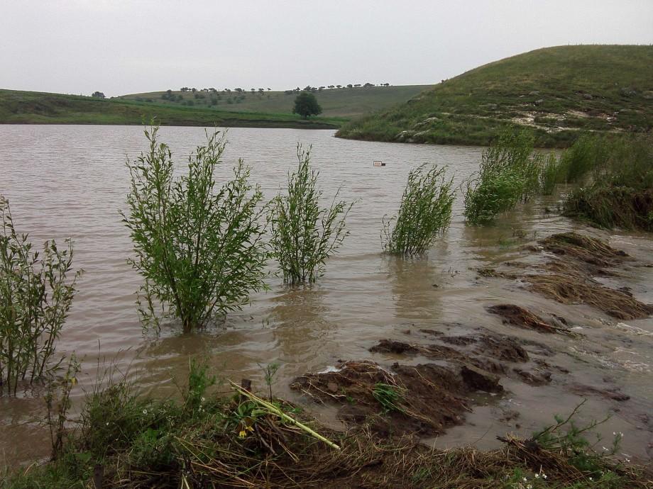 Gospodării înnămolite, garduri dărâmate, culturi agricole distruse. Ploile au afectat nouă raioane din țară