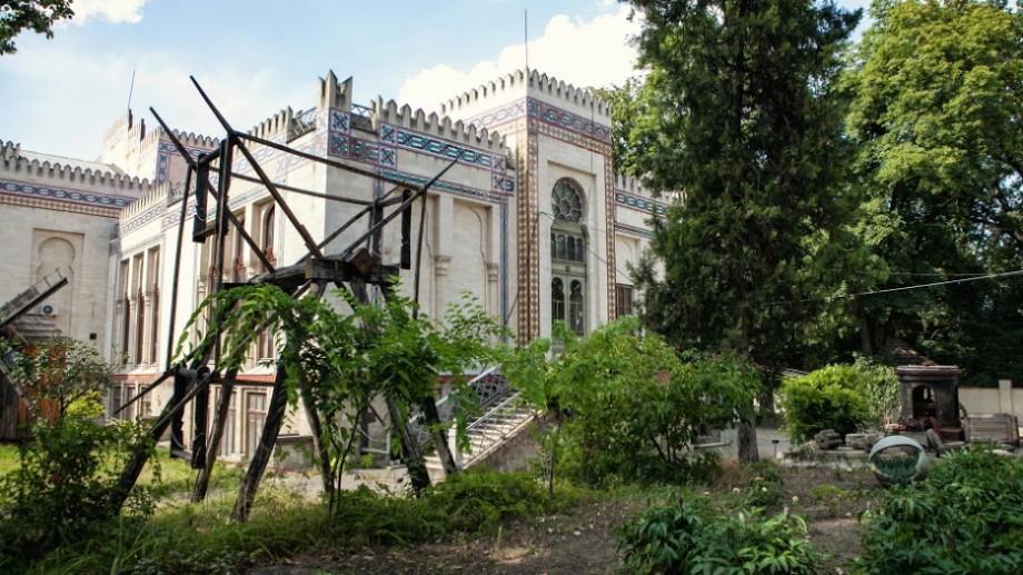 """15 motive să nu ratezi Yard Sale #50 """"Flora & Fauna"""" de la Muzeul Național de Etnografie și Istorie Naturală"""