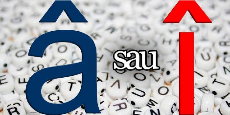 """Revenirea la """"â"""" din """"a"""" şi """"sunt"""" în grafia limbii române. Propunerile Academiei de Științe a Moldovei - #diez"""
