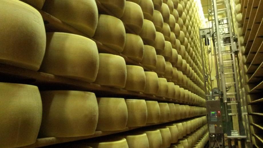 (foto) O excursie în fabrica de cașcaval Parmigiano Reggiano din Bagnolo
