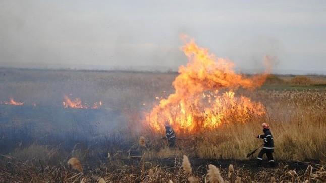 În acest weekend au fost depistate 60 de cazuri de incendii de vegetație pe arii extinse
