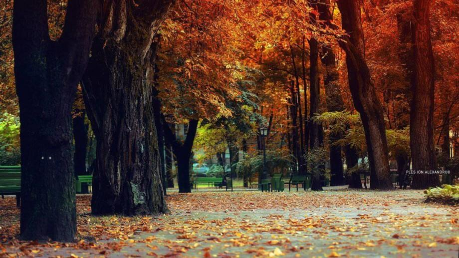 Recomandări #diez: 12 evenimente pe care să nu le ratezi miercuri, 21 septembrie