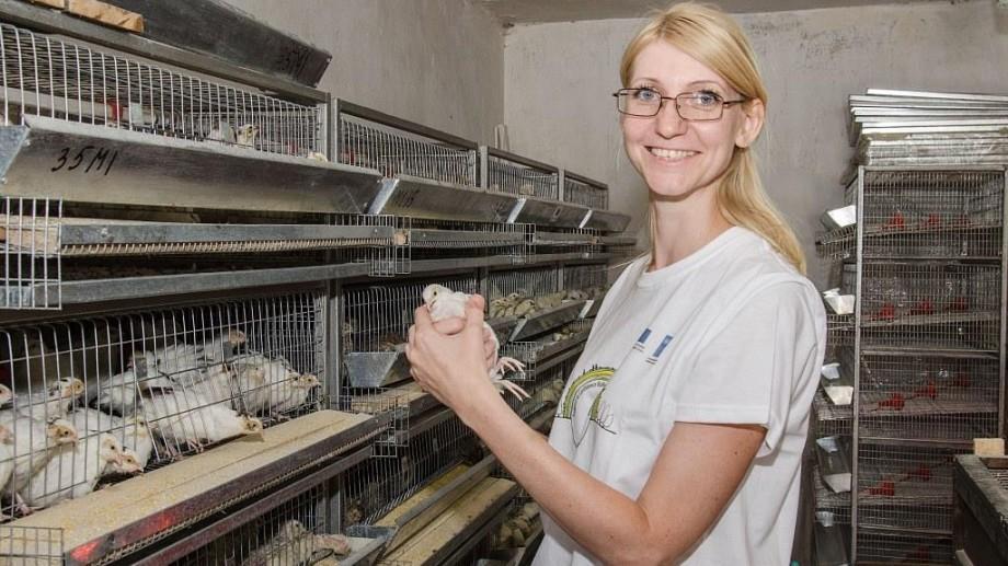 (foto) O tânără mămică din Tiraspol a creat o crescătorie de prepelițe cu ajutorul UE
