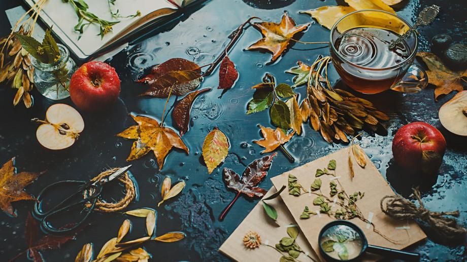 Recomandări de evenimente pentru o duminică ploioasă de 16 octombrie, 2016