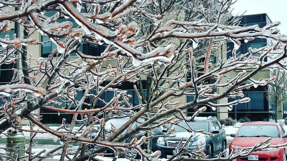 Meteo: A fost emis cod galben de înghețuri. Ce temperaturi ne așteaptă următoare zile