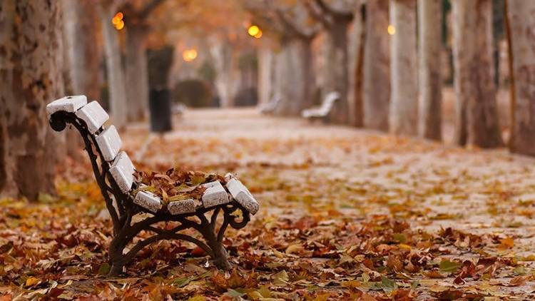 Zi de august în octombrie. Maxime de până la 25 de grade Celsius în toată țara