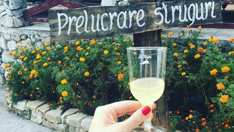 După Zilele Naționale ale Vinului, urmează Tulburelul! Vineri se dă start festivalului vinurilor tinere