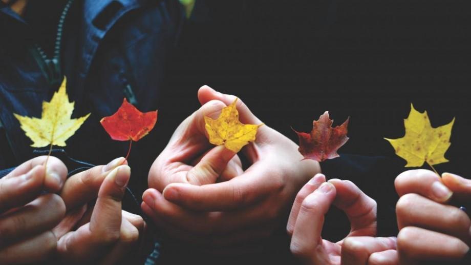 Recomandări de evenimente pentru ziua de marți, 11 octombrie