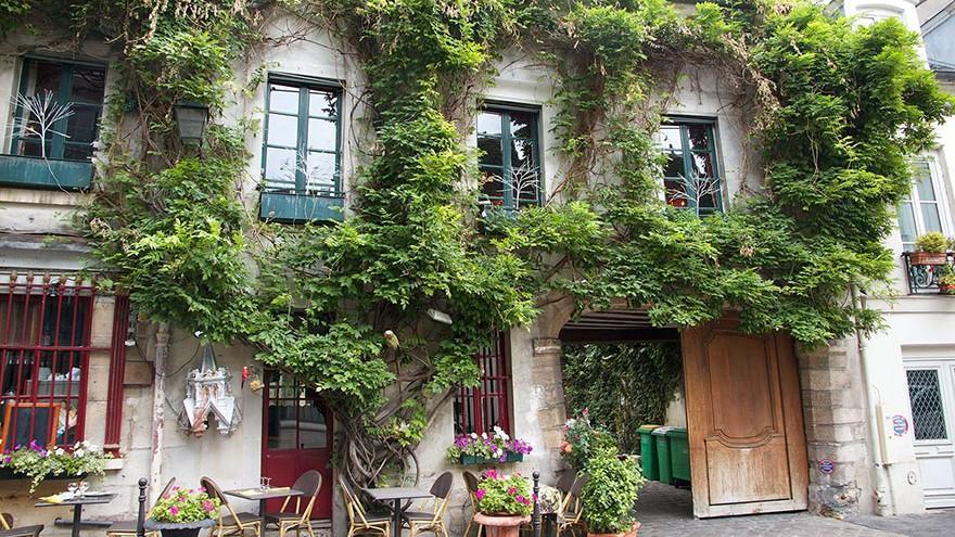 (foto) Lege nouă în Paris – locuitorii sunt îndemnați să își planteze propriile grădini urbane