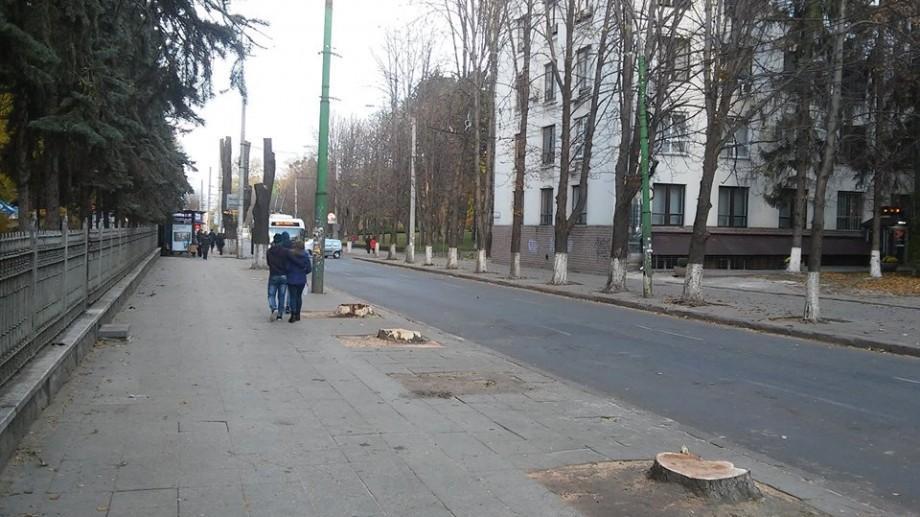 (foto) Motivul de ce au fost defrișați arborii de pe Bănulescu-Bodoni de lângă Parcul Central