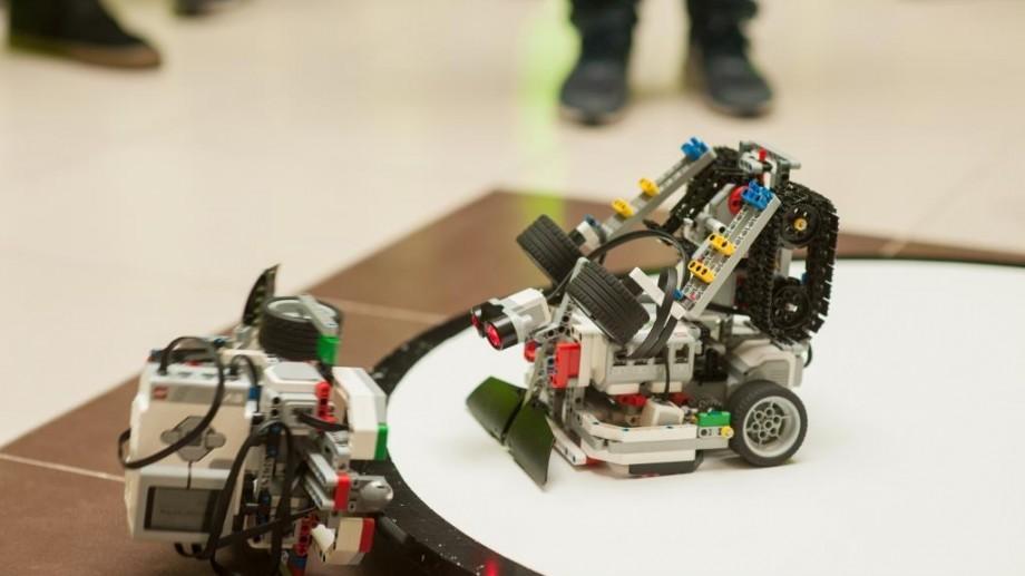 """(foto) """"Sumo Challenge Robocamp"""". Cum s-a desfășurat prima tabară de robotică din țară"""