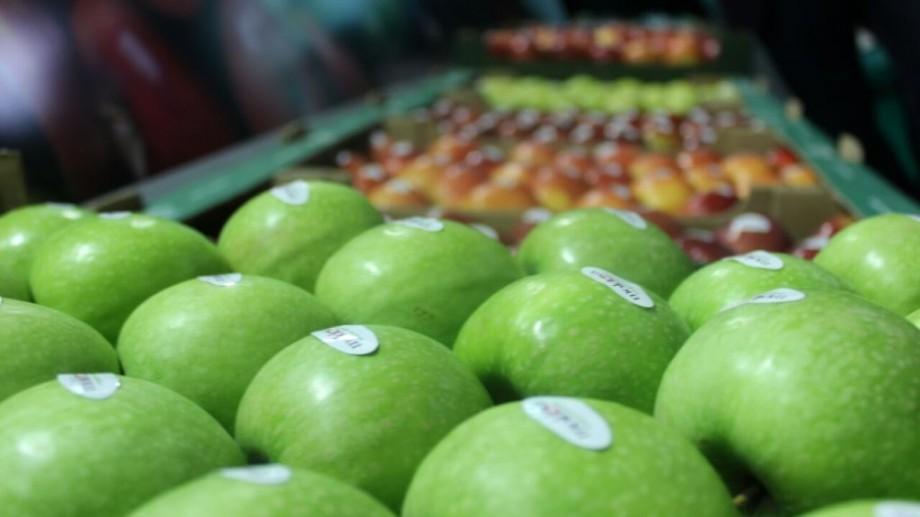 Gustul contează! Producătorii de fructe proaspete din Moldova au participat la o expoziție în România