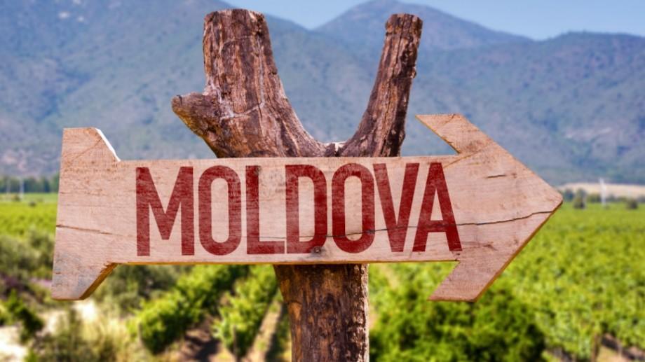"""Moldova are talent! Am obținut premiul """"Vocea Vinului"""" la un eveniment din Olanda"""