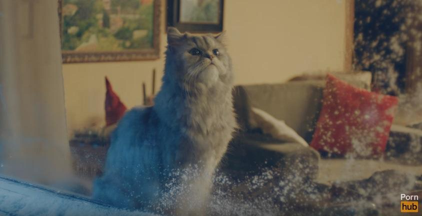 (video) Drăgălășenie de Sărbători: Pornhub și-a lansat spotul publicitar de Crăciun