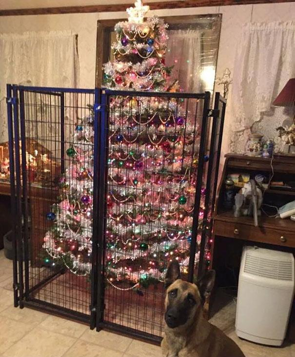 protecting-christmas-tree-from-dogs-cats-pets-34-585a917f50d3b__605