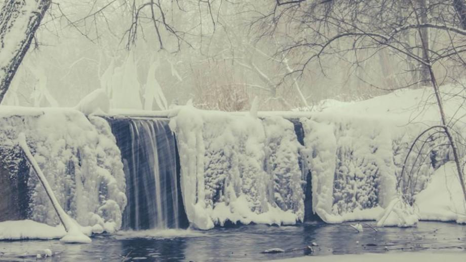 """(foto) Vis de iarnă sau cum arată Grădina Botanică din Chișinău care a """"înflorit"""" toată în alb"""