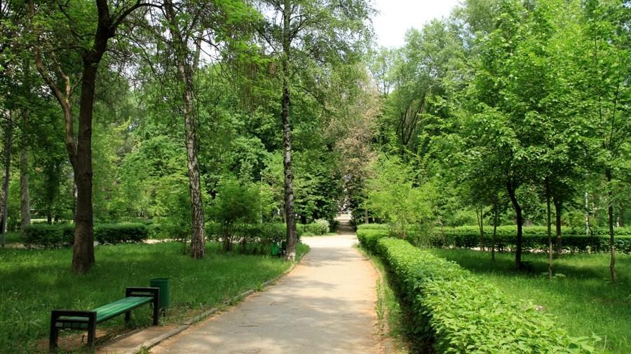 În parcurile din capitală se vor desfășura lucrări de curăţare şi defrişare a arborilor