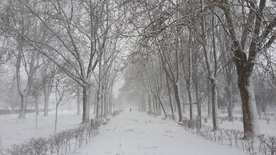 Cod galben de ninsori puternice pe teritoriul țării. Recomandările INP pentru șoferi