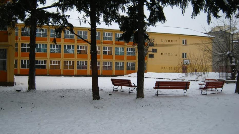 Bacterii E.coli au fost depistate în bucatele servite elevilor unei școli din țară
