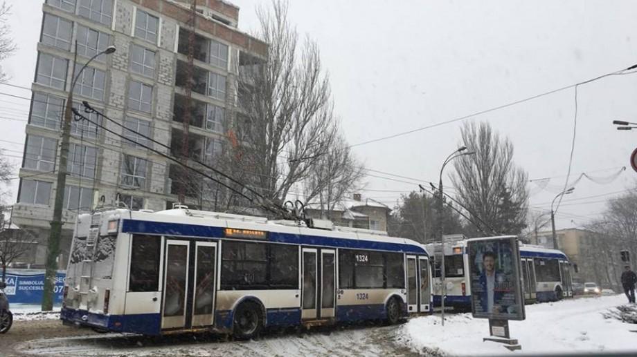 (foto) Ninsoarea a paralizat Chișinăul. Mai multe troleibuze blocate în sectorul Rîșcani