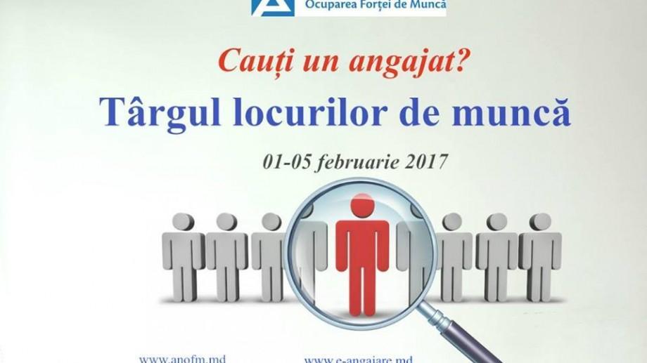 ANOFM organizează în primele zile ale lunii februarie un Târgul al locurilor de muncă