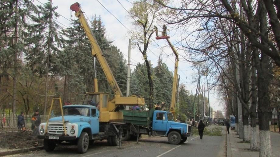Autoritățile au planificat lucrări de curățare și tăiere a arborilor în toate sectoarele Capitalei