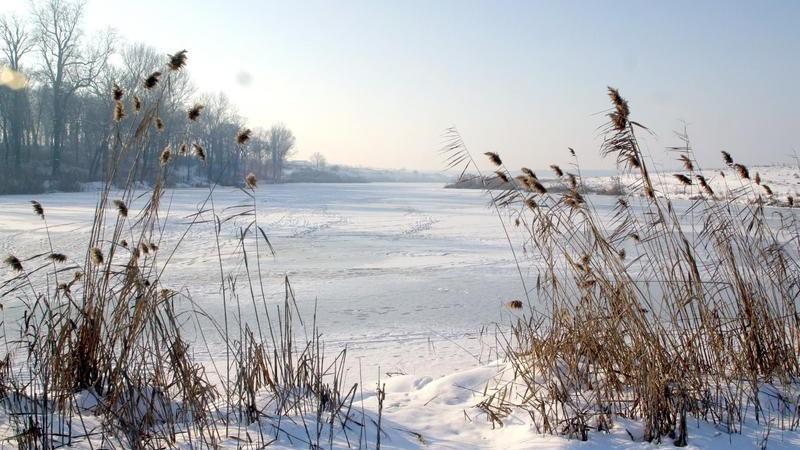 (foto) Lacurile și râurile din țară au înghețat. Vezi grosimea gheții din bazinelor acvatice din Chișinău
