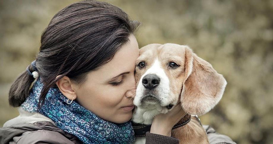 Recomandări #diez: 10 grupuri și pagini pe Facebook care te vor ajuta să adopți un patruped