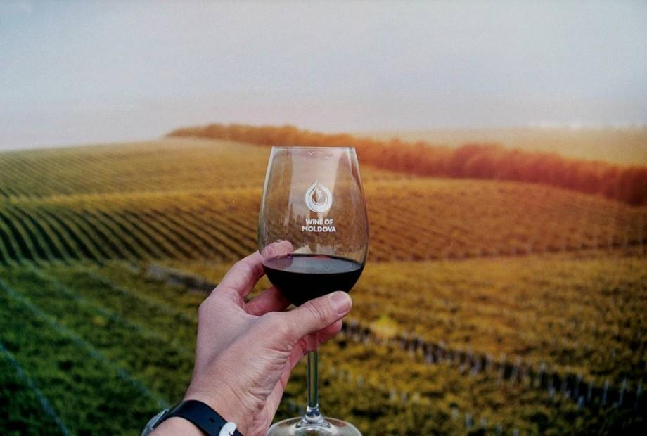 Un fost politician american vrea să devină vinificator moldovean