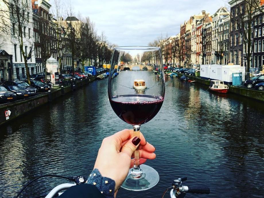 (video) Vinul Moldovei va fi promovat la cele mai importante expoziții internaționale din 2017