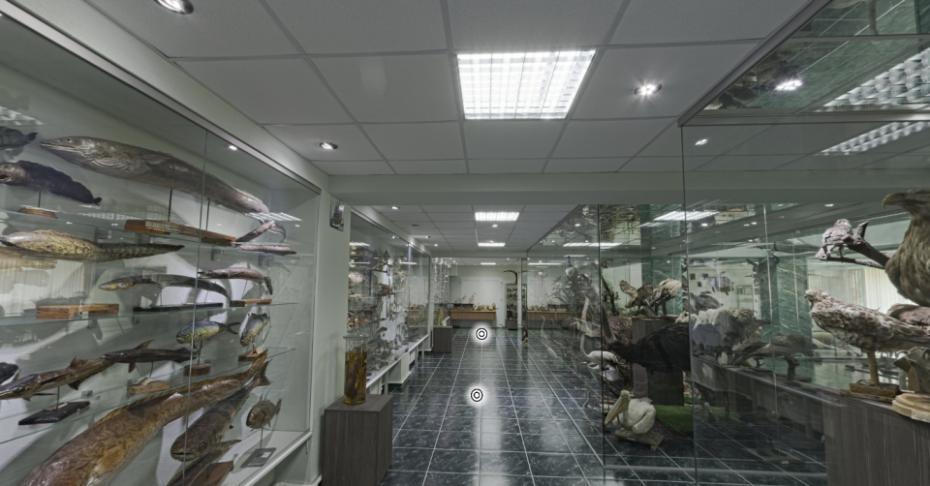 (foto) Descoperă-ți țara din fața calculatorului. Acum poți face tururi virtuale în muzeele din Moldova