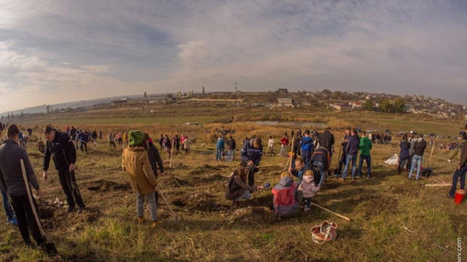 """""""Plantăm fapte bune în Moldova"""". Tinerii și-au propus să planteze patru hectare de arbori la Tohatin"""