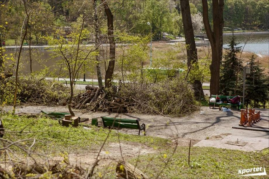 (galerie foto) Cetățenii s-au mobilizat și au curățat Parcul Valea Morilor de crengi și arbori doborâți