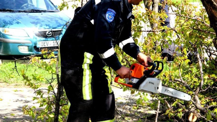 (foto) Lucrările de salubrizare continuă. 80 % din străzile capitalei au fost deja curățate
