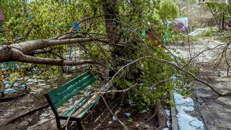 Cum vor fi folosiți banii alocați pentru lichidarea consecințelor calamităților naturale în Chișinău