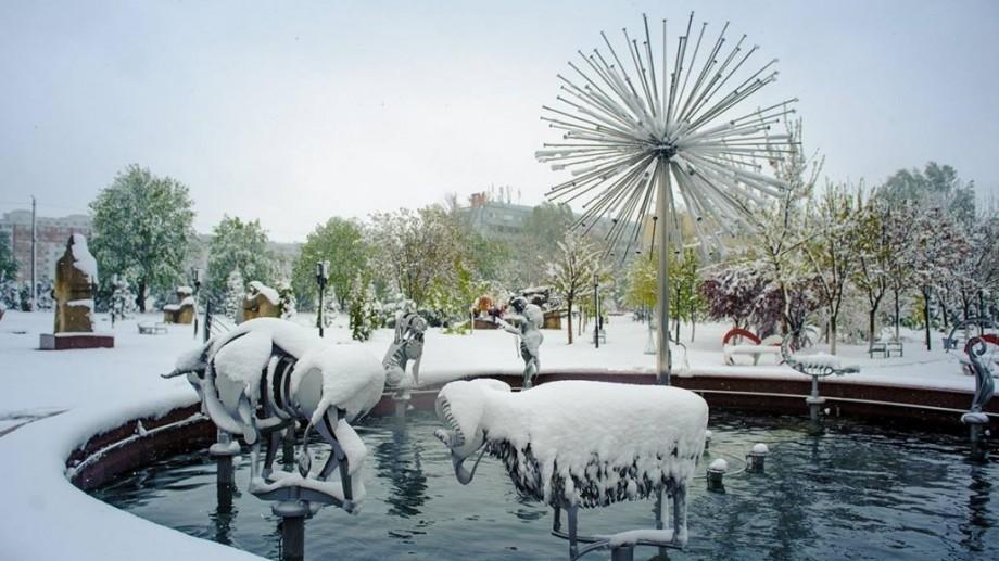 (galerie foto) Când primăvara se întâlnește cu iarna. O plimbare prin Parcul UTM după ninsoarea din aprilie