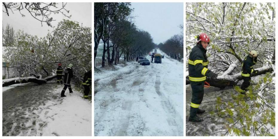 (foto, video) Bilanțul ninsorii de azi: zeci de localități fără lumină, mașini deteriorate și sute de copaci doborâți