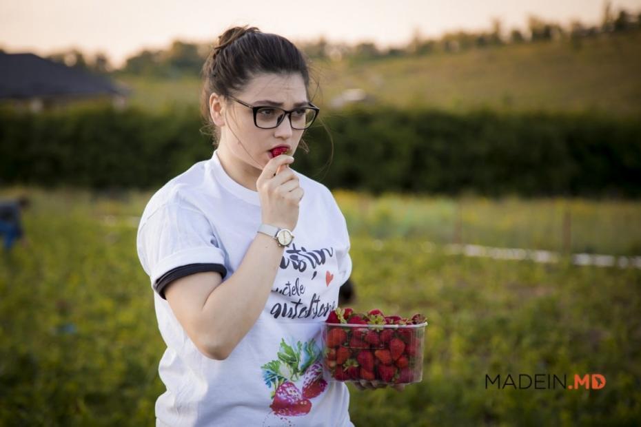 Nebănuite sunt drumurile fructelor, susțineți campania care caută cele mai bune fructe din Moldova
